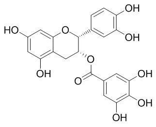 Chemical structure of (-)-Epicatechin gallate