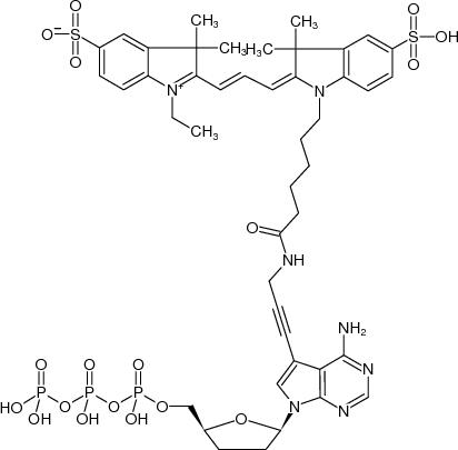 7-Propargylamino-7-deaza-ddATP (Cy3)