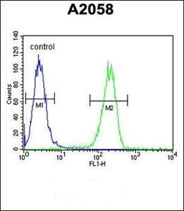 Flow cytometric analysis of A2058 cells using Annexin V antibody (primary antibody dilution at: 1:10-50)