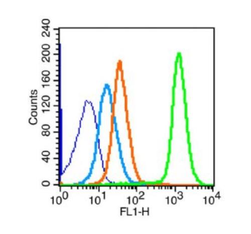 Flow cytometric analysis of Mouse spleen using IL12 antibody