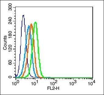 Flow cytometric analysis of U937 cell using CCR2-5 antibody.