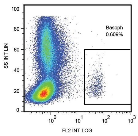 Flow cytometric analysis of human peripheral blood cells using CD107a antibody (PE)