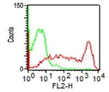 Flow cytometric analysis of hPBMC using CD45 antibody