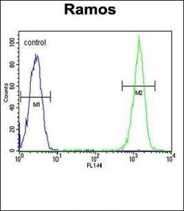Flow cytometric analysis of Ramos cells using CMTM7 antibody (primary antibody dilution at: 1:10-50)
