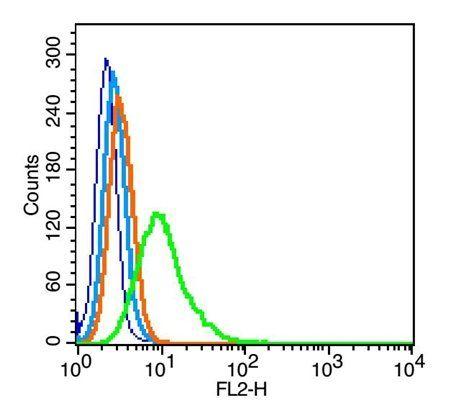 Flow cytometric analysis of RSC96(blue) PE(white blue) using CREB1 (phospho-Ser133) antibody (1:200)