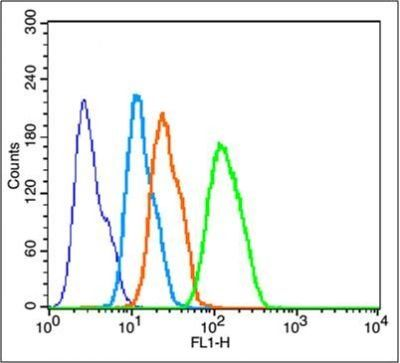 Flow cytometric analysis of Hepg2 Cells using Cytochrome C antibody.