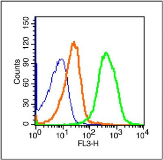 Flow cytometric analysis of Mouse spleen cell using PDL1 antibody.