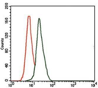 Flow cytometric analysis of HeLa cells using DLL4 antibody