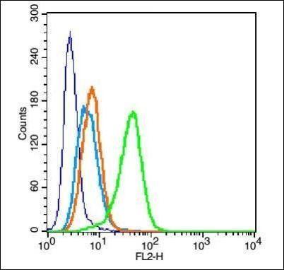 Flow cytometric analysis of U937 cell using Dopamine Transporter antibody.