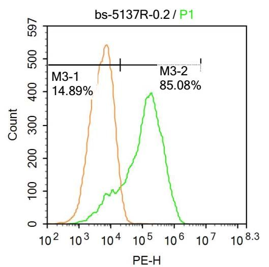 Flow cytometric analysis of U-937 cells using TFEB antibody.