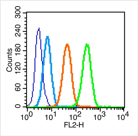 Flow cytometric analysis of MCF7 tissue using FSH receptor antibody