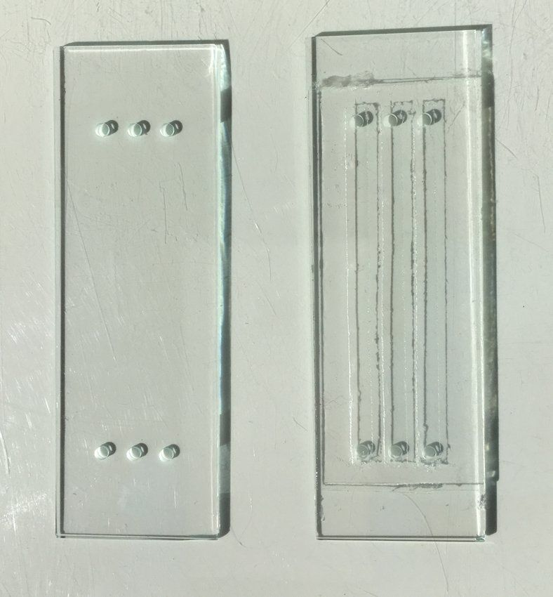 Functionalized Microscopy slides