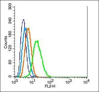 Flow cytometric analysis of Rsc96 cell using GLI1 antibody.
