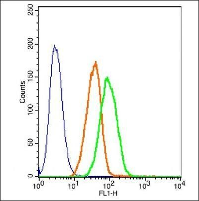 Flow cytometric analysis of unstained cells using GSK3 beta (phospho-Ser9) antibody.