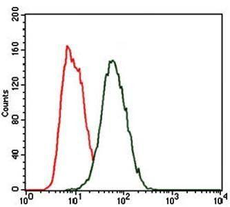 Flow cytometric analysis of HeLa cells using HEXA antibody