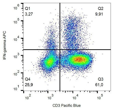 Flow cytometric analysis of human PBMC using IFN gamma antibody (APC)