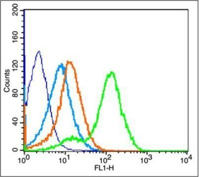 Flow cytometric analysis of Mouse Kidney tissue using IGF1R (phospho-Tyr1165-Tyr1166) antibody.