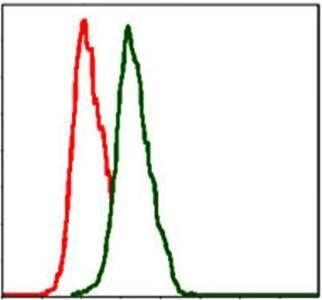 Flow cytometric analysis of Hela cells using ITGB1 antibody