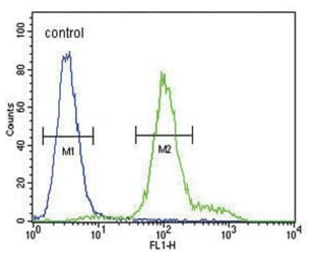 Flow cytometric analysis of MDA-MB435 cells using IL12RB2 antibody