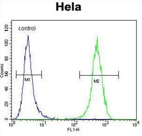 Flow cytometric analysis of HeLa cells using WFDC1 antibody
