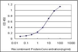 Line graph illustrates about the Ag-Ab reactions using different concentrations of antigen and serial dilutions of recombinant protein using Myocilin antibody