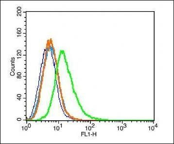 Flow cytometric analysis of Rsc96 cell  using Melatonin Receptor 1A antibody.