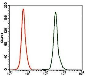 Flow cytometric analysis of K562 cells using NR6A1 antibody