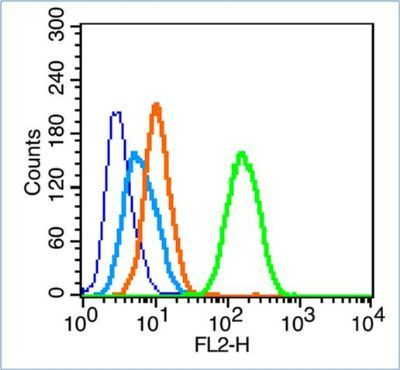 Flow cytometric analysis of HeLa cell using LC3 antibody.