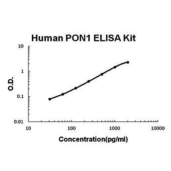The standard curve illustrates about the dynamic range of Human PON1 ELISA Kit using various concentrations.