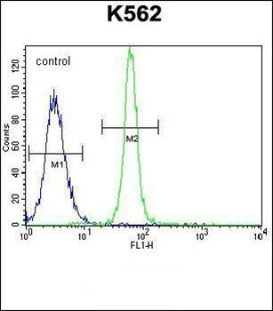 Flow cytometric analysis of K562 cells (right histogram) compared to a negative control cell (left histogram) using LRIT1 antibody (C-term)