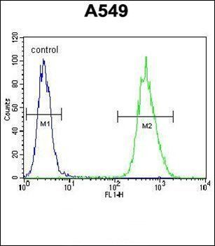 Flow cytometric analysis of A549 cells (right histogram) compared to a negative control cell (left histogram) using NIX antibody (Center)