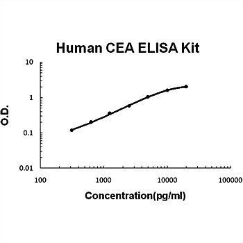 The standard curve illustrates about the dynamic range of Human CEA ELISA Kit using various concentrations.