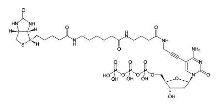 Chemical structure of using Biotin-16-dCTP (Biotin) (Small Molecules)