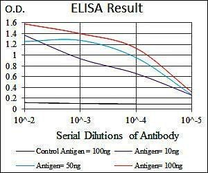 Line graph illustrates about the Ag-Ab reactions using different concentrations of antigen and serial dilutions of RAF1 antibody