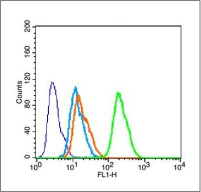 Flow cytometric analysis of MCF 7 Cell using Tau protein (phospho-Ser198) antibody.