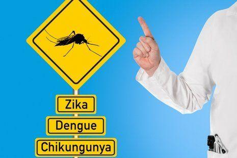Chikungunya, Dengue, Zika Virus Signpost
